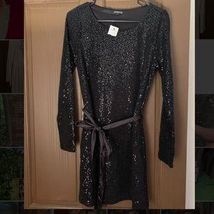 Express sequins dress